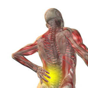 bigstock-High-resolution-concept-or-con-43945414-painfulmuscles-no-background
